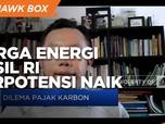 Terapkan Pajak Karbon, Harga Energi Fosil RI Berpotensi Naik