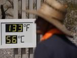 Gelombang Panas Ekstrem Serang AS, Tembus 54 Derajat Celcius