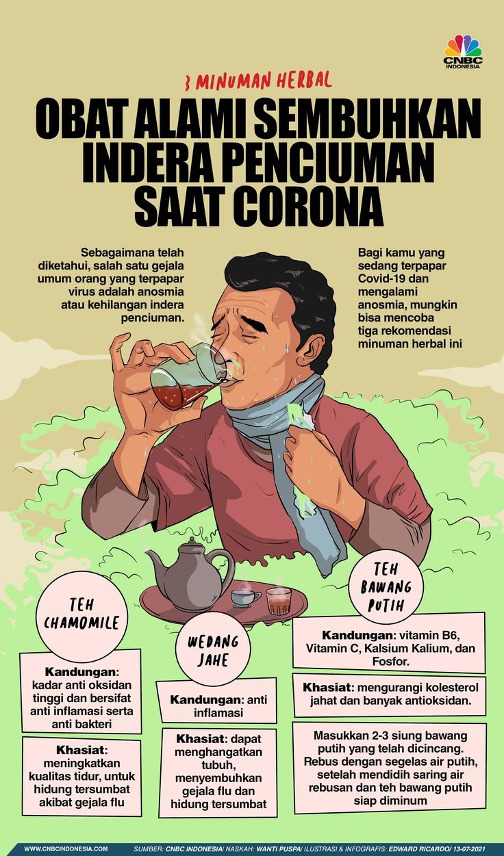 INFOGRAFIS, 3 Minuman Herbal Ini Sembuhkan Indera Penciuman saat Corona