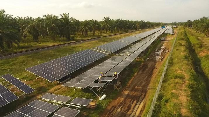 Wujudkan Transisi Energi, Pertamina Targetkan Portofolio Energi Hijau 17% Tahun 2030