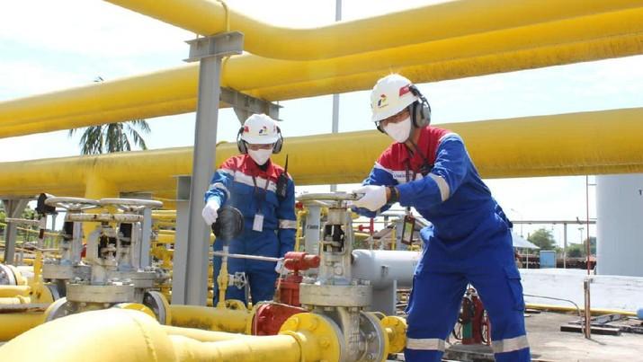 doc pt pertamina gas (pertagas).
