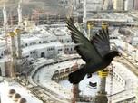 Melihat Prokes Ketat Saat Ibadah Haji 2021 di Arab Saudi