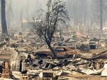 Potret Kebakaran Besar di Hutan AS, Rumah-Mobil Hangus