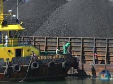 Rekor Terus, Batu Bara Bisa Tembus US$300/ton? Not Impossible