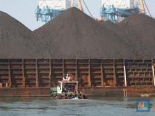 34 Perusahaan Batu Bara Dilarang Ekspor, Ini Reaksi Penambang