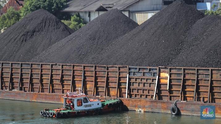 Kapal tongkang Batu Bara (CNBC Indonesia/Tri Susilo)