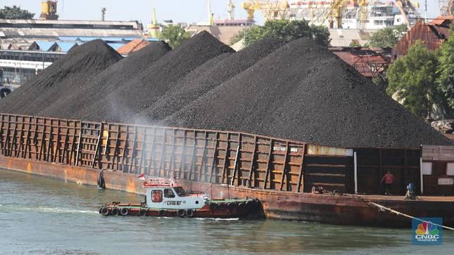 Ambyar Kabeh! Harga Batu Bara Ambruk 20% Lebih Seminggu
