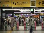 Mengenal Virus Baru Yezo di Jepang, Menular dari Kutu