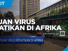 Bukan Corona, Virus Mematikan Ini Muncul di Afrika!