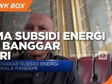 Begini Reformasi Skema Subsidi Energi dari Banggar DPR-RI
