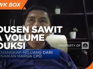 Harga CPO Melesat, Produsen Sawit Perluas Pasar Ekspor