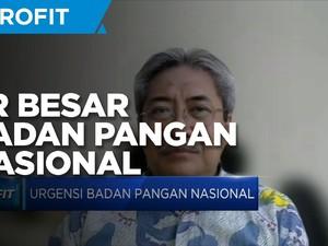 Bustanul Arifin Sebut Ini PR Kepala Badan Pangan Nasional