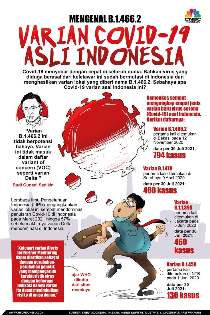 Infografis: Mengenal B.1.466.2, Varian Covid-19 Asli Indonesia