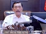 Rencana Besar Luhut Demi Kawasan Industri Konawe Sulawesi