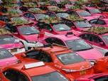 Sepi Penumpang, Atap Taksi-taksi Ini Jadi Lahan Tanaman