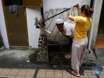 Gaya Warga Pakai Air Tanah di Tengah Isu Jakarta Tenggelam