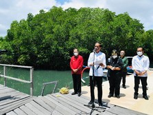 Kawasan Ini Bakal Dipamerkan Jokowi ke Negara G-20 di 2022