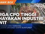 GIMNI: Harga CPO Tinggi Juga Bisa Bahayakan Industri Sawit