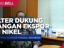 Larangan Ekspor Nickel Ore Dorong Nilai Tambah Industri Lokal
