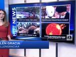 Hot News: Mobil Tak Laku, Hingga Ramalan Matahari Akan Mati